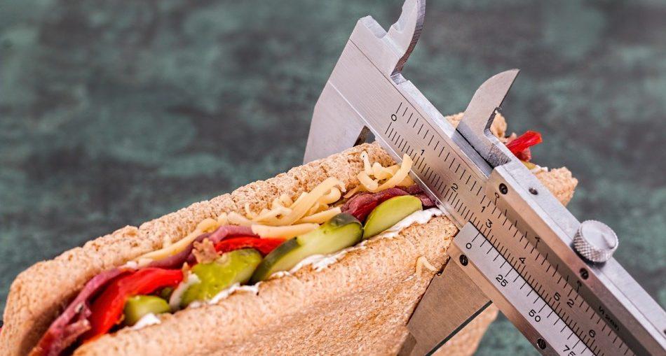 wybor diety